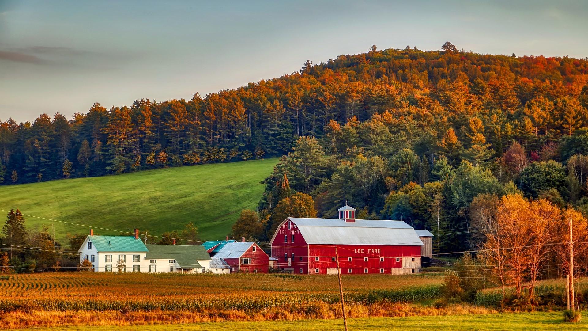 New England Area